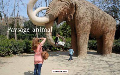 L'édition : paysage-animal
